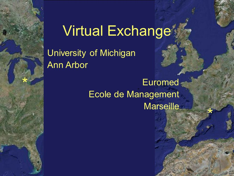 * * * Virtual Exchange Euromed Ecole de Management Marseille University of Michigan Ann Arbor *