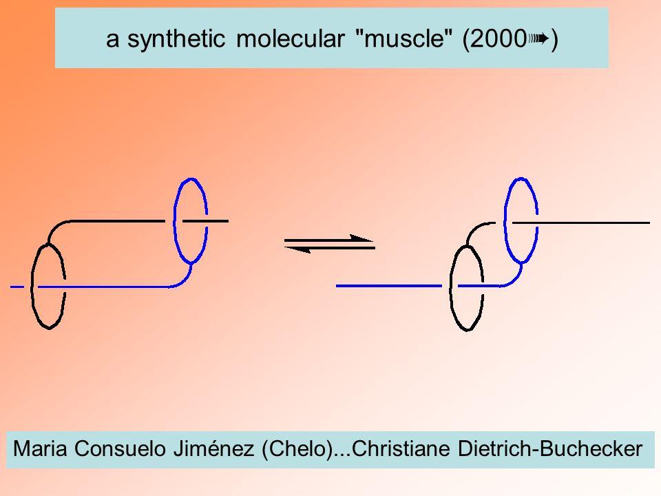 a synthetic molecular