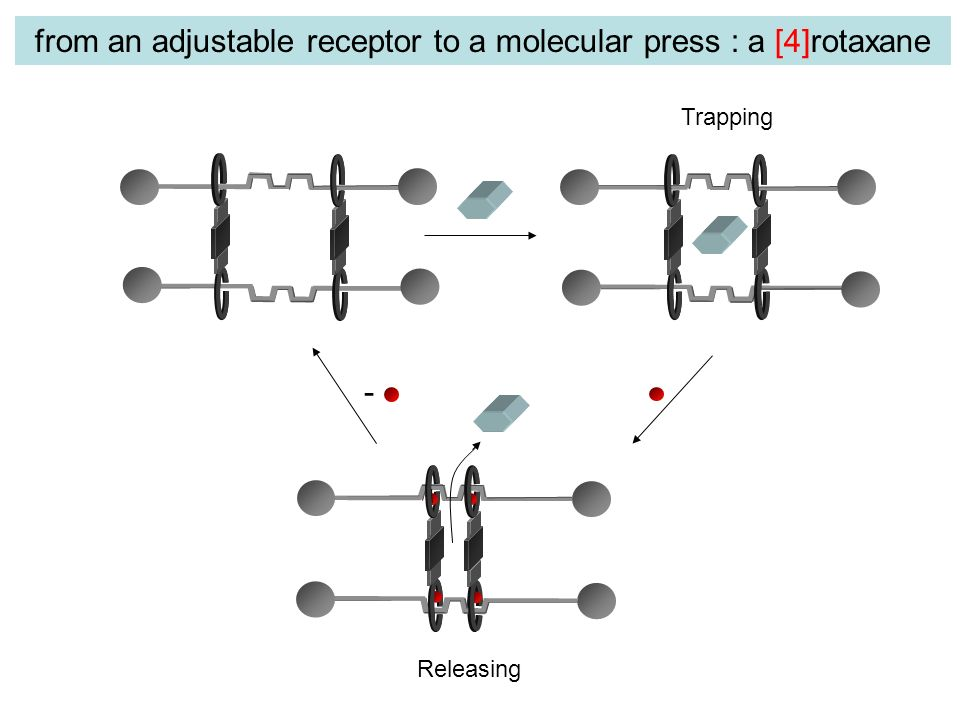 - Trapping Releasing from an adjustable receptor to a molecular press : a [4]rotaxane