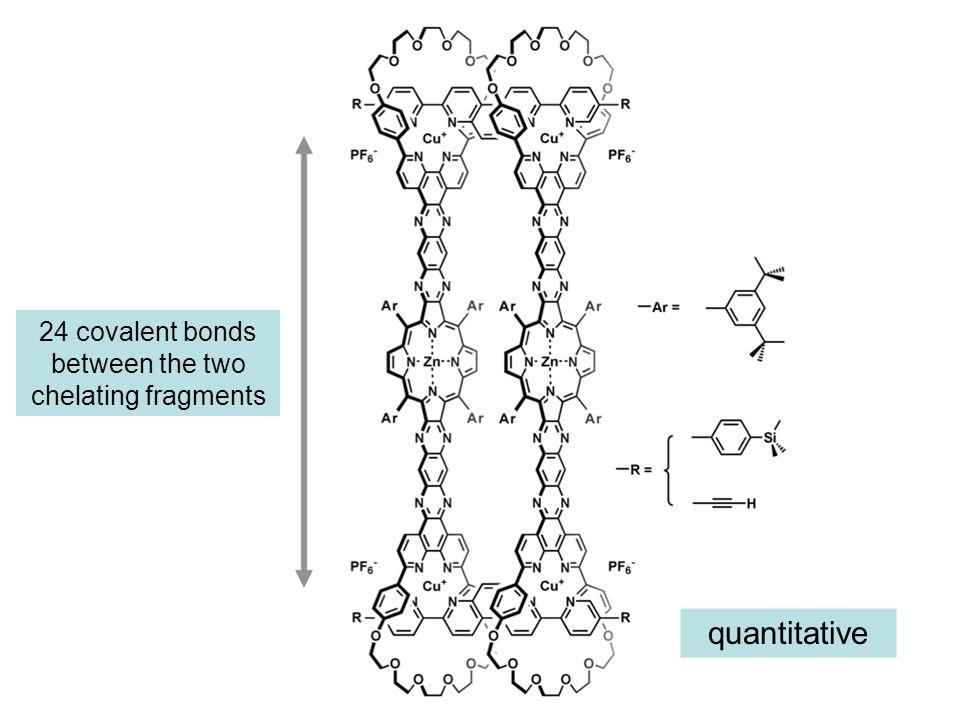 24 covalent bonds between the two chelating fragments quantitative