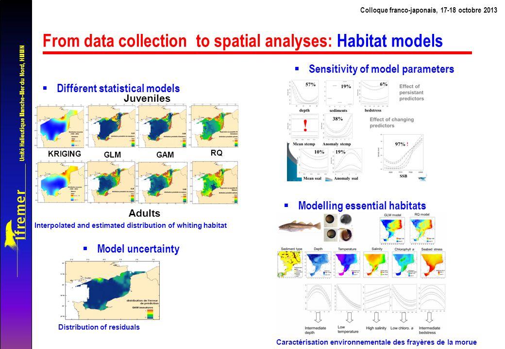 Unité Halieutique Manche-Mer du Nord, HMMN From data collection to spatial analyses: Trophic networks Colloque franco-japonais, 17-18 octobre 2013