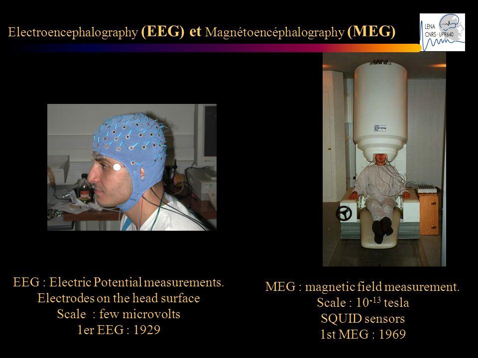 Electroencephalography (EEG) et Magnétoencéphalography (MEG) : MEG : magnetic field measurement. Scale : 10 -13 tesla SQUID sensors 1st MEG : 1969 EEG