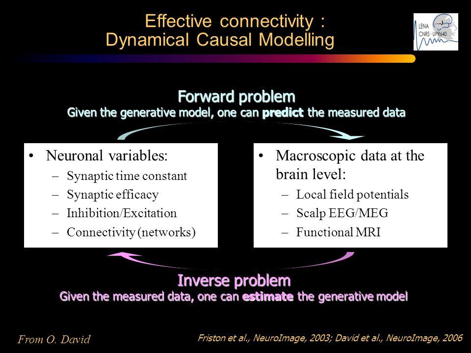 Effective connectivity : Dynamical Causal Modelling Friston et al., NeuroImage, 2003; David et al., NeuroImage, 2006 Neuronal variables: –Synaptic tim