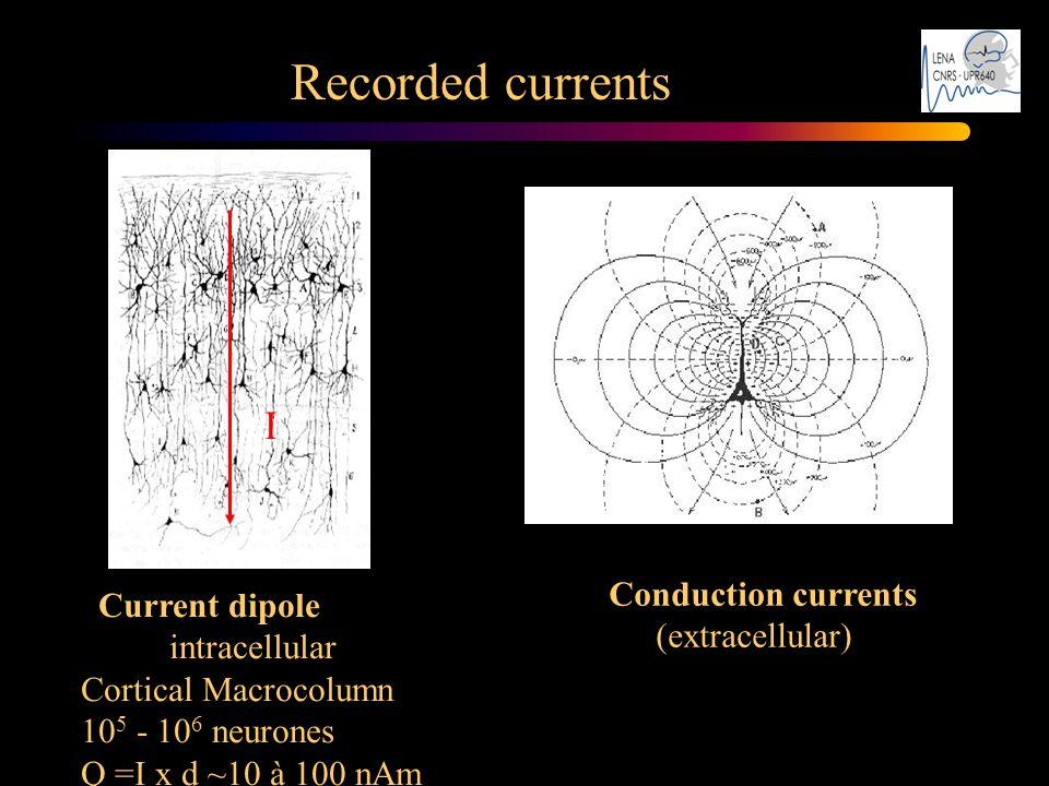 Recorded currents Quelques mm2 Conduction currents (extracellular) Current dipole intracellular Cortical Macrocolumn 10 5 - 10 6 neurones Q =I x d ~10