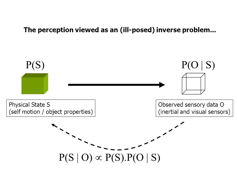 The perception viewed as an (ill-posed) inverse problem...
