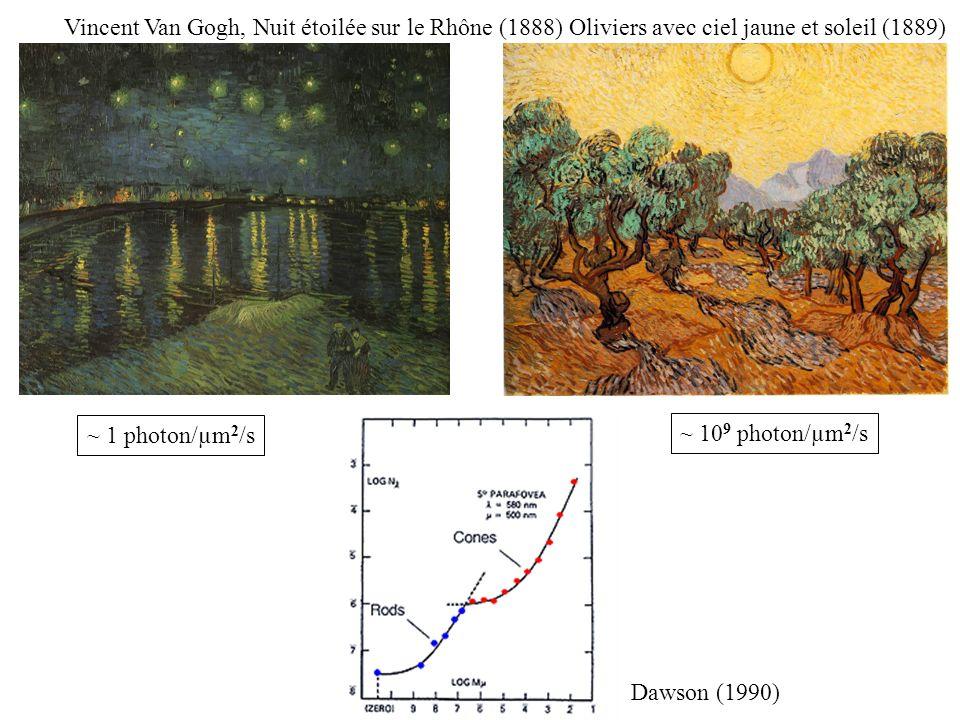 ~ 1 photon/µm 2 /s ~ 10 9 photon/µm 2 /s Vincent Van Gogh, Nuit étoilée sur le Rhône (1888) Oliviers avec ciel jaune et soleil (1889) Dawson (1990)