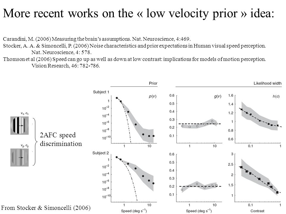 More recent works on the « low velocity prior » idea: Carandini, M.