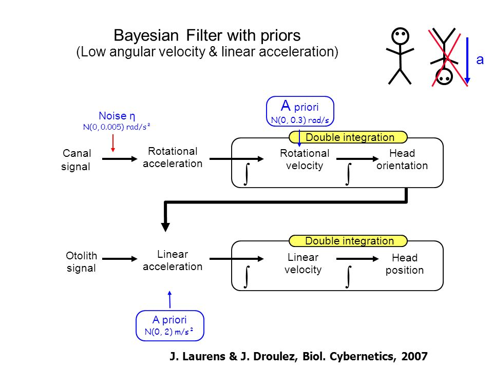 Bayesian Filter with priors (Low angular velocity & linear acceleration) Rotational acceleration Otolith signal Canal signal Linear acceleration Linear velocity Noise η N(0, 0.005) rad/s² A priori N(0, 0.3) rad/s Double integration Rotational velocity Head orientation A priori N(0, 2) m/s² Head position Double integration a J.