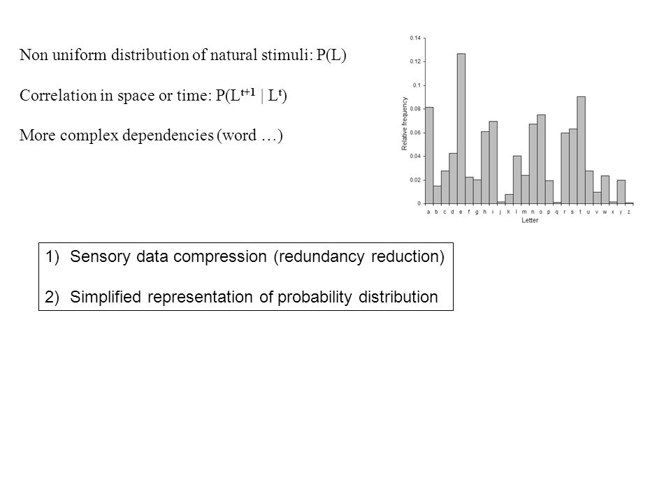 Non uniform distribution of natural stimuli: P(L) Correlation in space or time: P(L t+1 | L t ) More complex dependencies (word …) 1)Sensory data compression (redundancy reduction) 2)Simplified representation of probability distribution