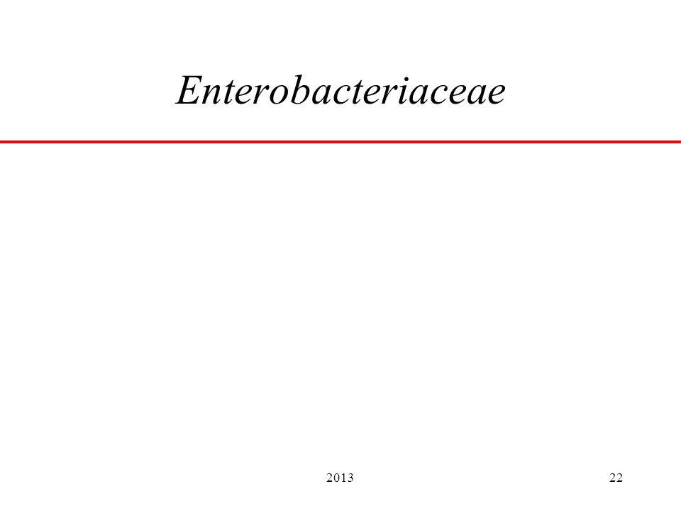 201322 Enterobacteriaceae