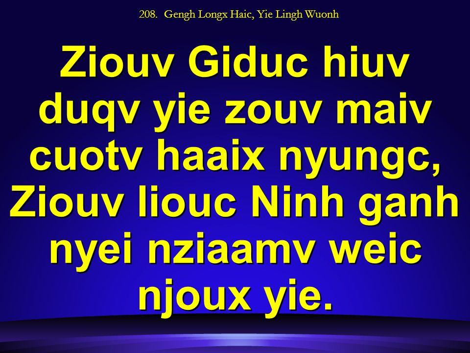 208. Gengh Longx Haic, Yie Lingh Wuonh Ziouv Giduc hiuv duqv yie zouv maiv cuotv haaix nyungc, Ziouv liouc Ninh ganh nyei nziaamv weic njoux yie.