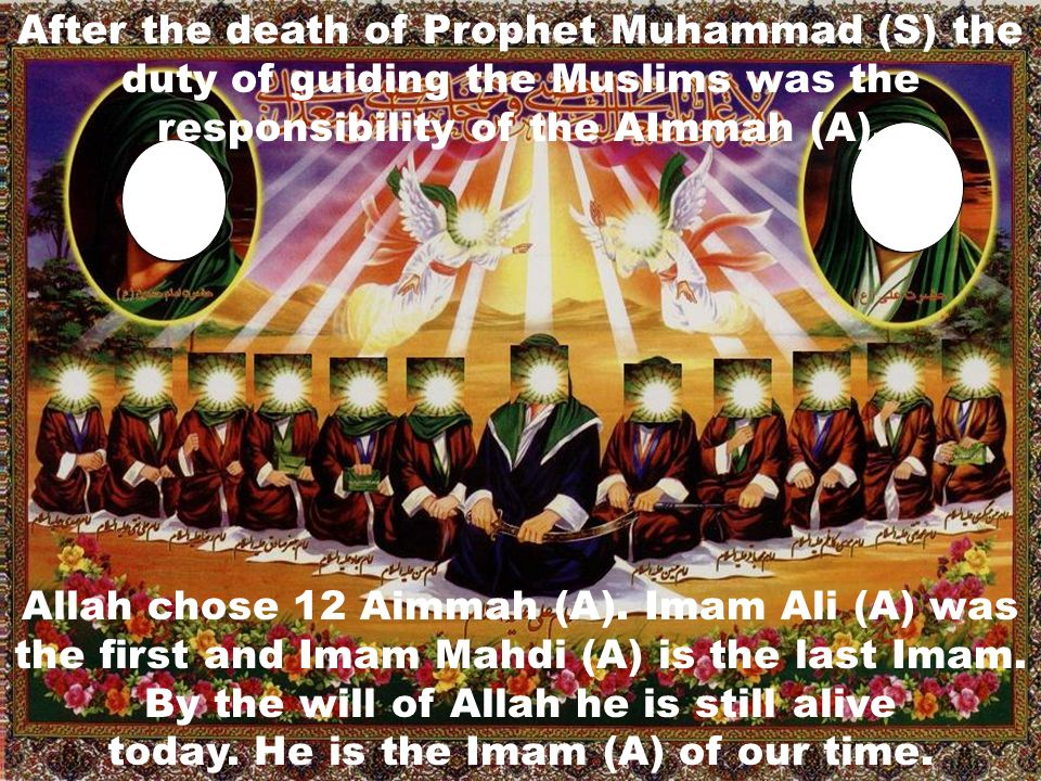 Allah chose 12 Aimmah (A). Imam Ali (A) was the first and Imam Mahdi (A) is the last Imam. By the will of Allah he is still alive today. He is the Ima