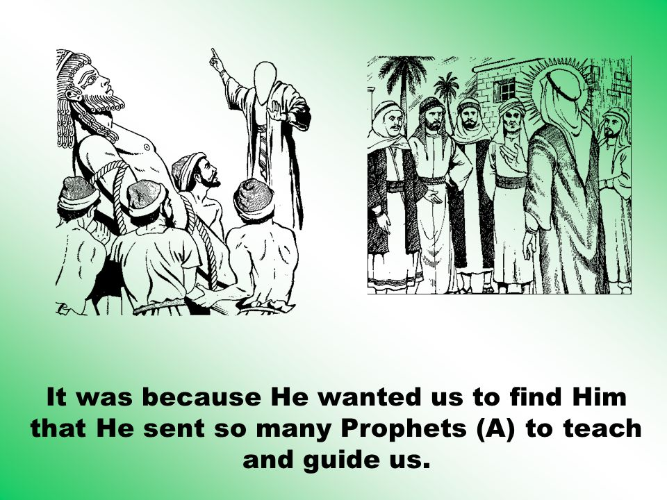 It was because He wanted us to find Him that He sent so many Prophets (A) to teach and guide us.