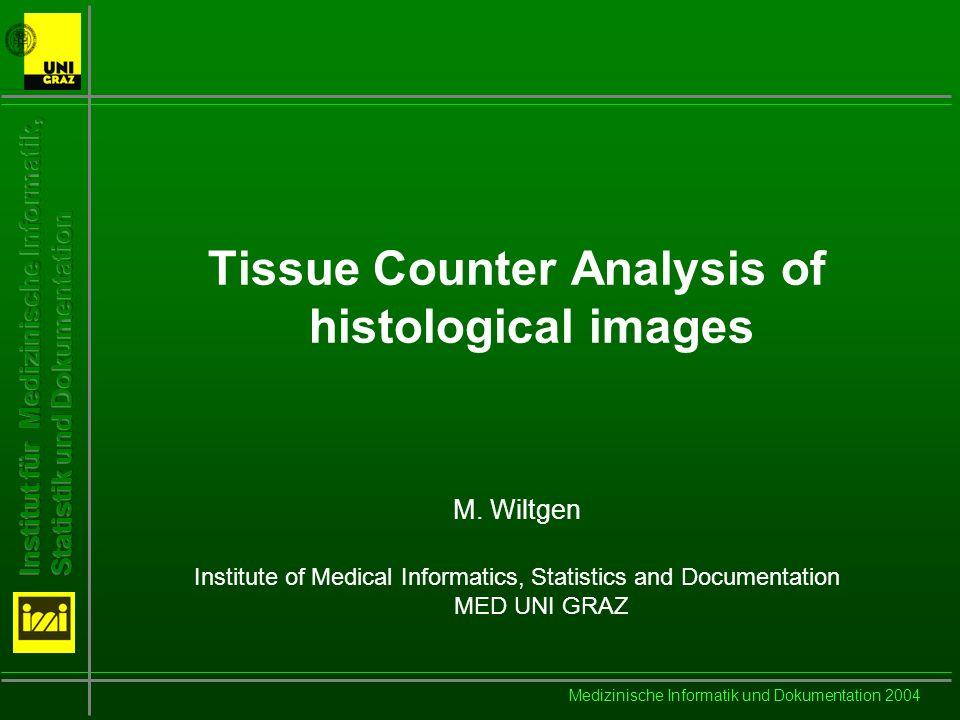 Medizinische Informatik und Dokumentation 2004 Steps in Image Analysis Preprocessing Segmentation Feature Extraction Classification Interpretation