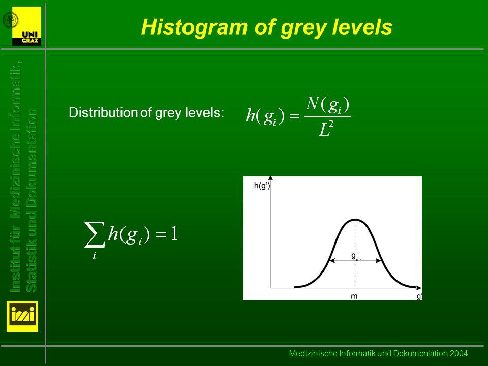 Medizinische Informatik und Dokumentation 2004 Features based on the histogram Mean value Standard deviation Skewness and Kurtosis Entropy of the grey level distribution