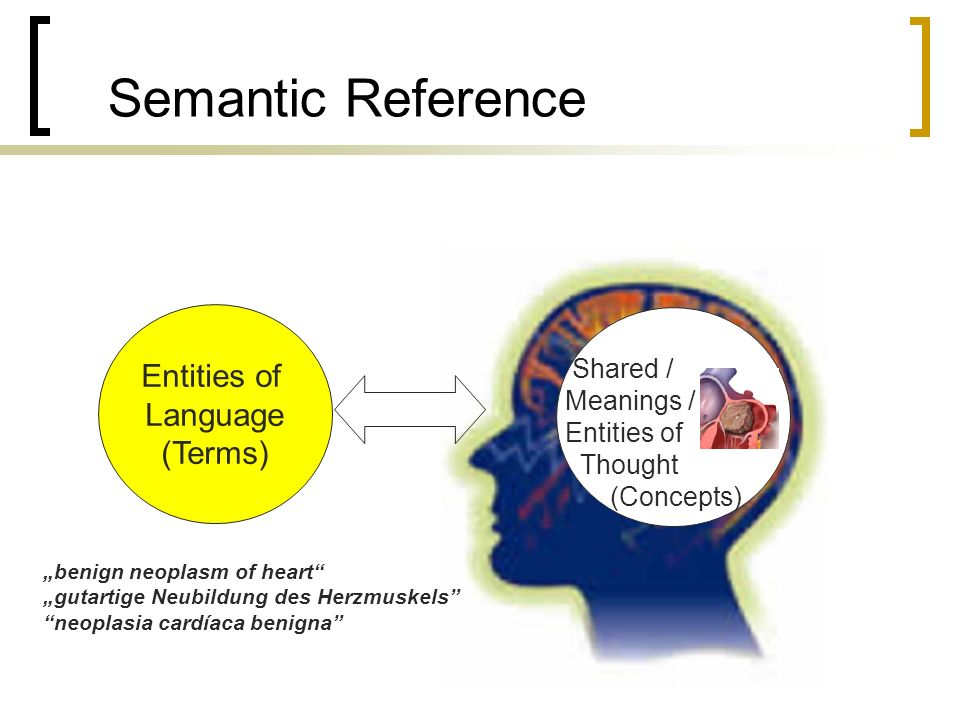 Semantic Reference Entities of Language (Terms) benign neoplasm of heart gutartige Neubildung des Herzmuskels neoplasia cardíaca benigna Shared / Meanings / Entities of Thought (Concepts)