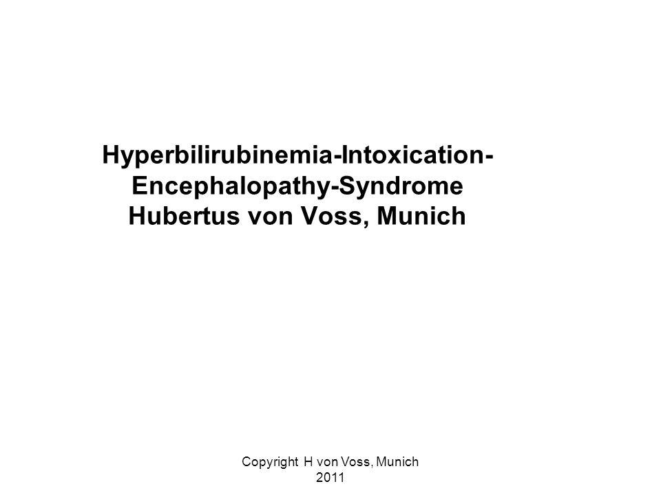 Copyright H von Voss, Munich 2011 Hyperbilirubinemia-Intoxication- Encephalopathy-Syndrome Hubertus von Voss, Munich