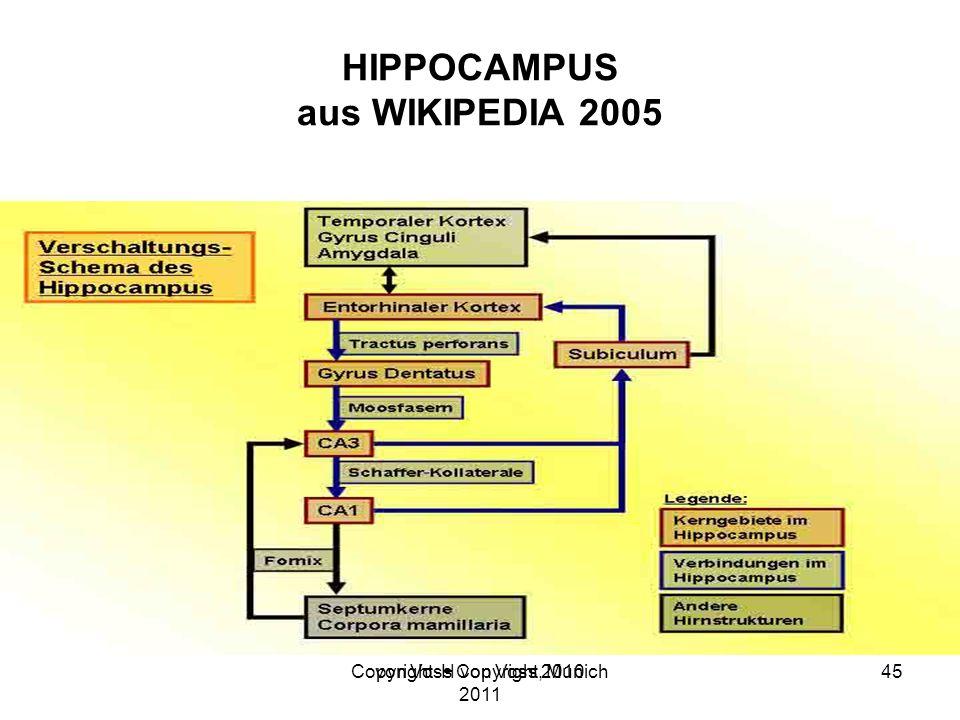 Copyright H von Voss, Munich 2011 HIPPOCAMPUS aus WIKIPEDIA 2005 von Voss Copyright 201045