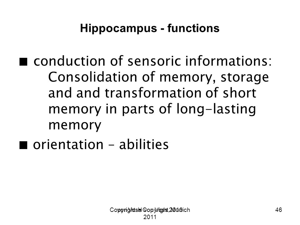 Copyright H von Voss, Munich 2011 Hippocampus - functions conduction of sensoric informations: Consolidation of memory, storage and and transformation of short memory in parts of long-lasting memory orientation – abilities von Voss Copyright 201046