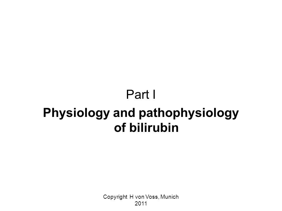 Copyright H von Voss, Munich 2011 Part I Physiology and pathophysiology of bilirubin