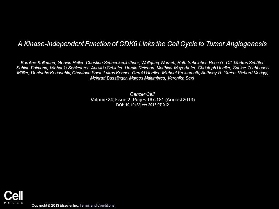 A Kinase-Independent Function of CDK6 Links the Cell Cycle to Tumor Angiogenesis Karoline Kollmann, Gerwin Heller, Christine Schneckenleithner, Wolfga