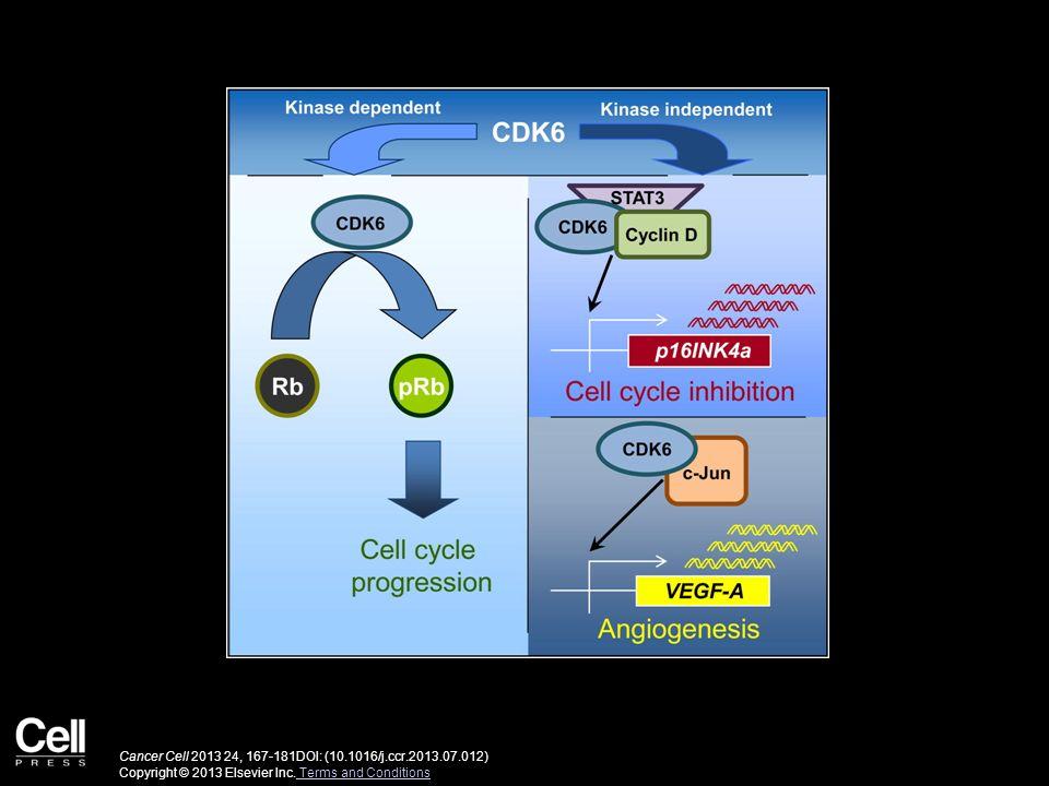 Cancer Cell 2013 24, 167-181DOI: (10.1016/j.ccr.2013.07.012) Copyright © 2013 Elsevier Inc. Terms and Conditions Terms and Conditions