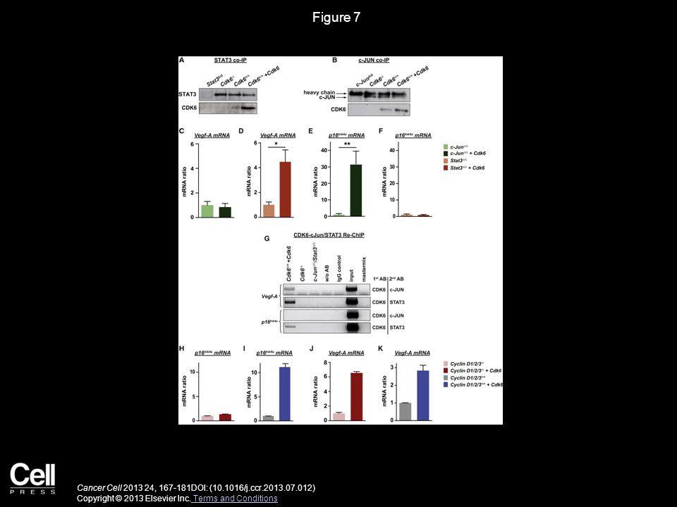 Figure 7 Cancer Cell 2013 24, 167-181DOI: (10.1016/j.ccr.2013.07.012) Copyright © 2013 Elsevier Inc. Terms and Conditions Terms and Conditions
