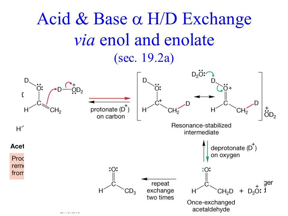 Acid & Base H/D Exchange via enol and enolate (sec. 19.2a)
