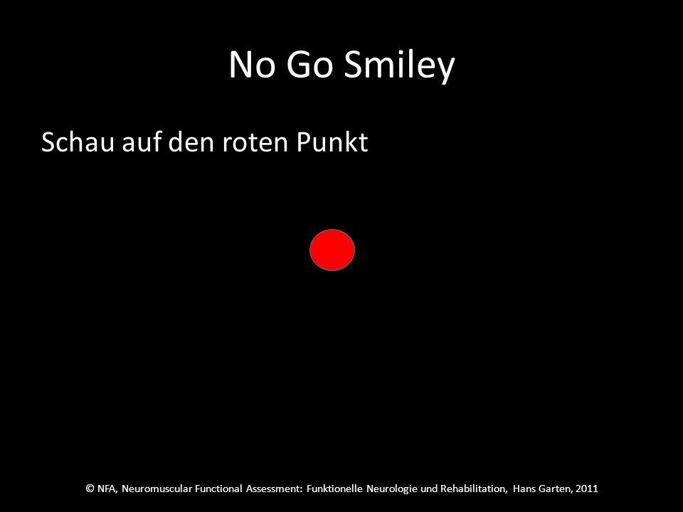 © NFA, Neuromuscular Functional Assessment: Funktionelle Neurologie und Rehabilitation, Hans Garten, 2011 No Go Smiley Übe konzentriert pro Sitzung einmal vom Anfang bis zum Ende des Programms.