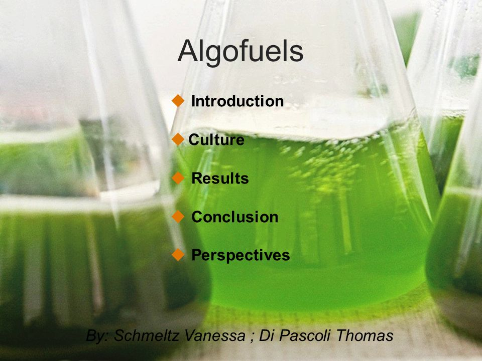 Algofuels Introduction Culture Results Conclusion Perspectives By: Schmeltz Vanessa ; Di Pascoli Thomas
