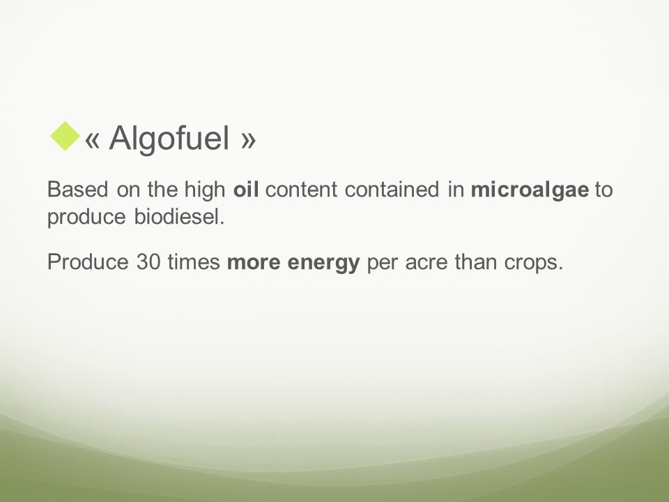 « Algofuel » Based on the high oil content contained in microalgae to produce biodiesel. Produce 30 times more energy per acre than crops.