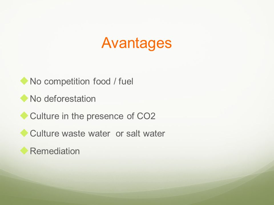 Avantages No competition food / fuel No deforestation Culture in the presence of CO2 Culture waste water or salt water Remediation
