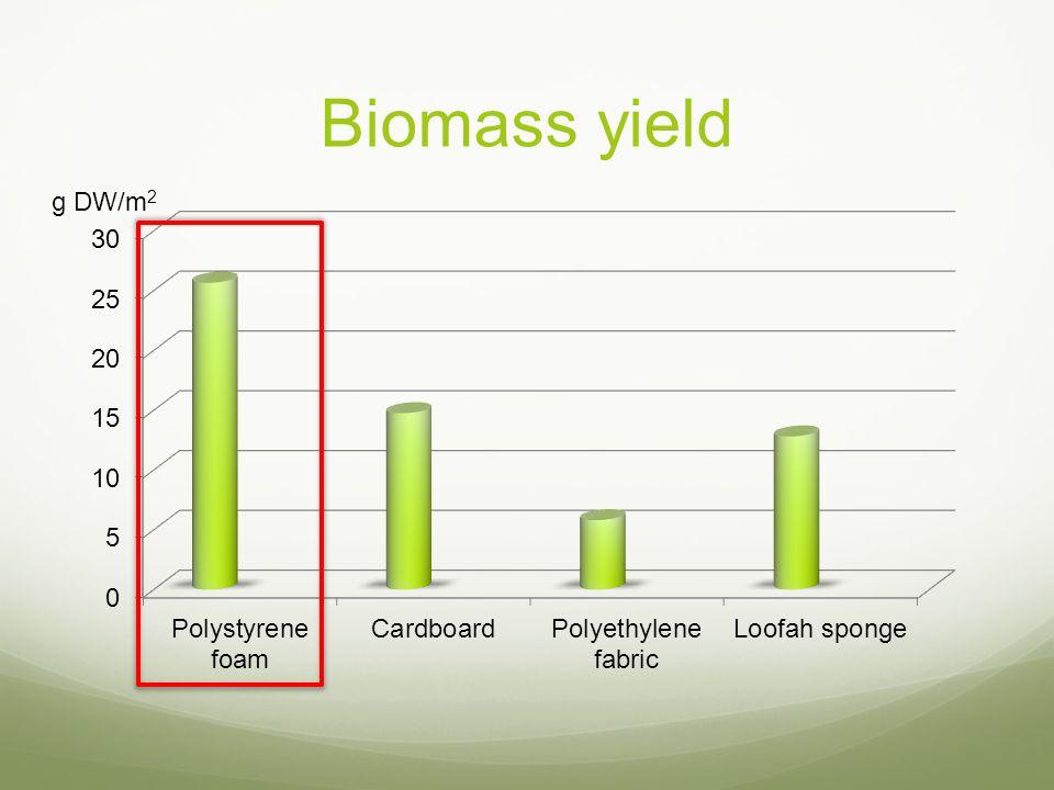 Biomass yield g DW/m 2
