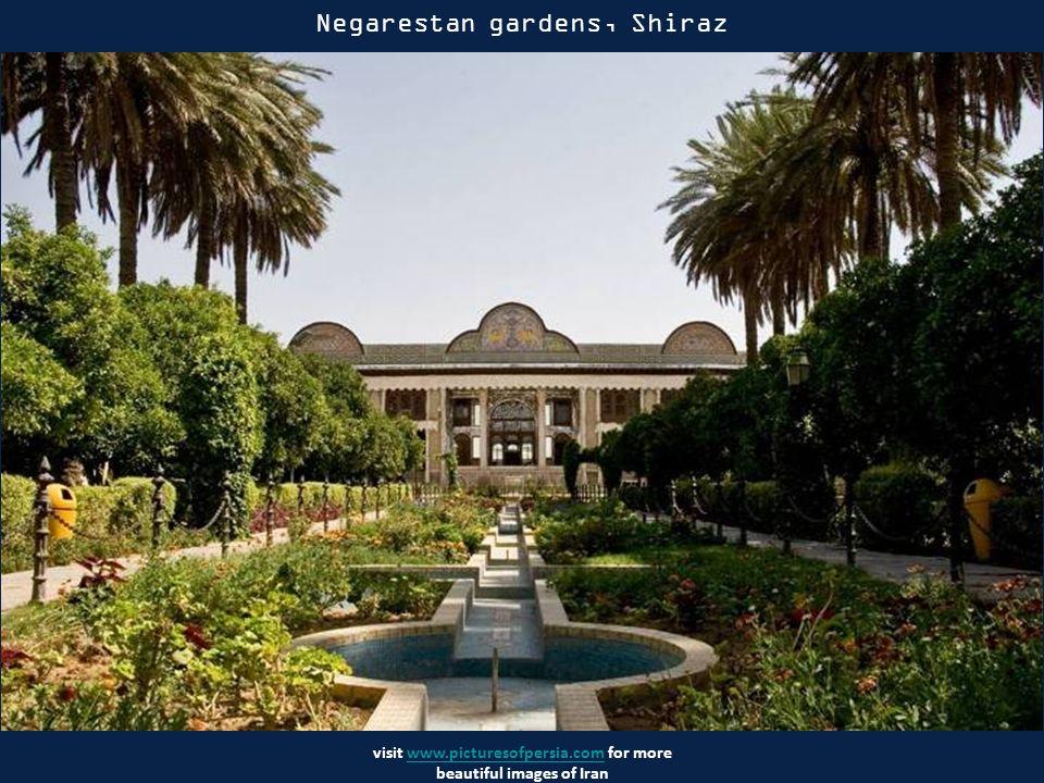 visit www.picturesofpersia.com for more beautiful images of Iranwww.picturesofpersia.com Persepolis - miasto w starożytnej Persji, założone przez Dariusza I w 518 p.n.e.