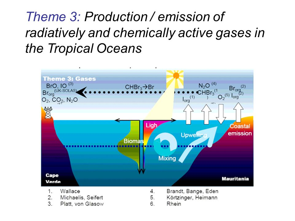 Theme 3: Production / emission of radiatively and chemically active gases in the Tropical Oceans