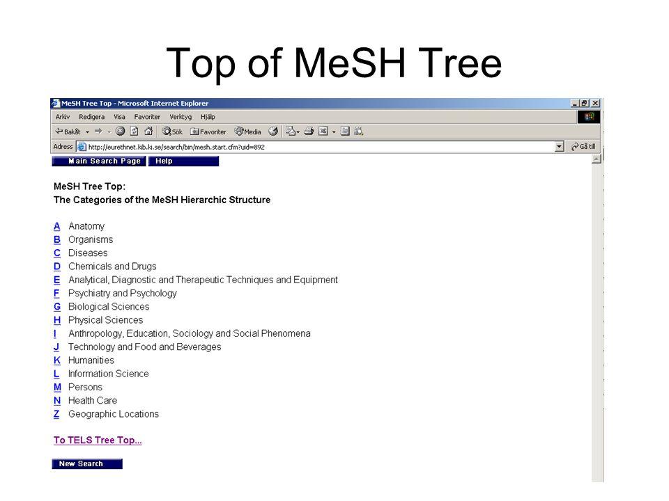 Top of MeSH Tree