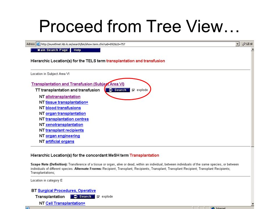 Proceed from Tree View…