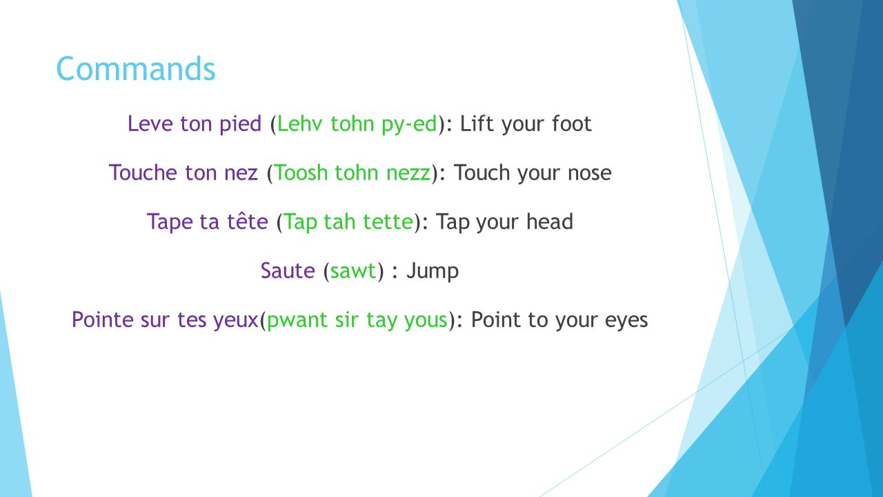 Commands Leve ton pied (Lehv tohn py-ed): Lift your foot Touche ton nez (Toosh tohn nezz): Touch your nose Tape ta tête (Tap tah tette): Tap your head