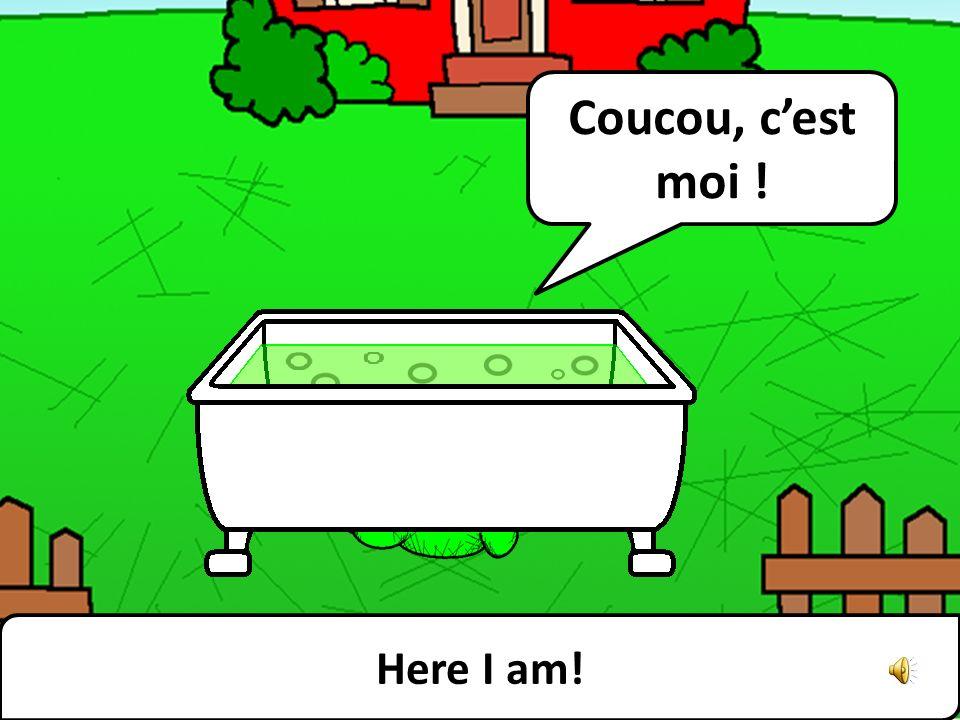 This bath is my favourite part of the garden. Cette baignoire est ma partie préférée du jardin.