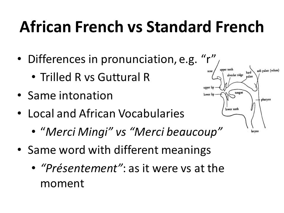 African French vs Standard French Differences in pronunciation, e.g. r Trilled R vs Guttural R Same intonation Local and African Vocabularies Merci Mi