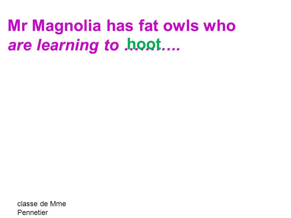 classe de Mme Pennetier Mr Magnolia has fat owls who are learning to ……….. hoot