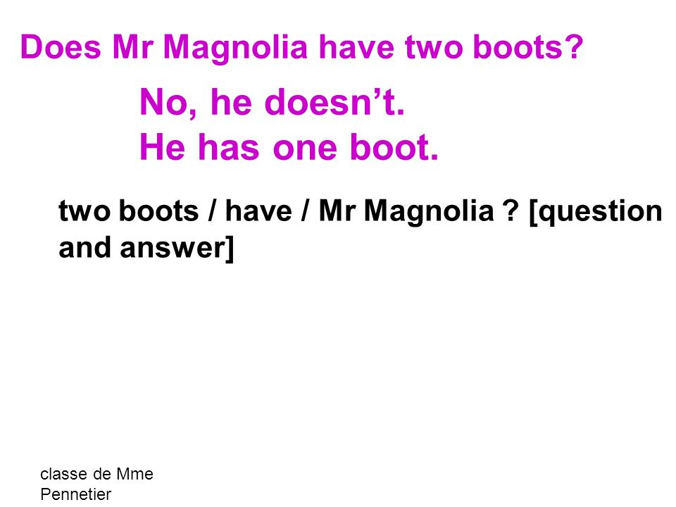 classe de Mme Pennetier two boots / have / Mr Magnolia ? [question and answer] Does Mr Magnolia have two boots? No, he doesnt. He has one boot.