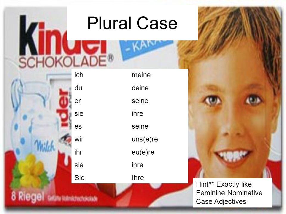 Plural Case ich meine dudeine erseine sieihre esseine wiruns(e)re ihreu(e)re sieihre SieIhre Hint** Exactly like Feminine Nominative Case Adjectives