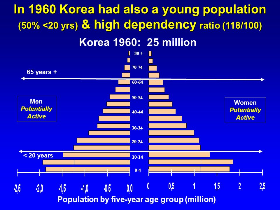 10-14 20-24 70-74 50-54 60-64 40-44 30-34 0-4 80 + In 1960 Korea had also a young population (50% <20 yrs) & high dependency ratio (118/100) Korea 196