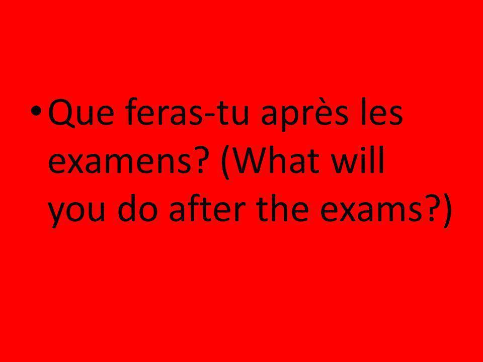 Que feras-tu après les examens? (What will you do after the exams?)