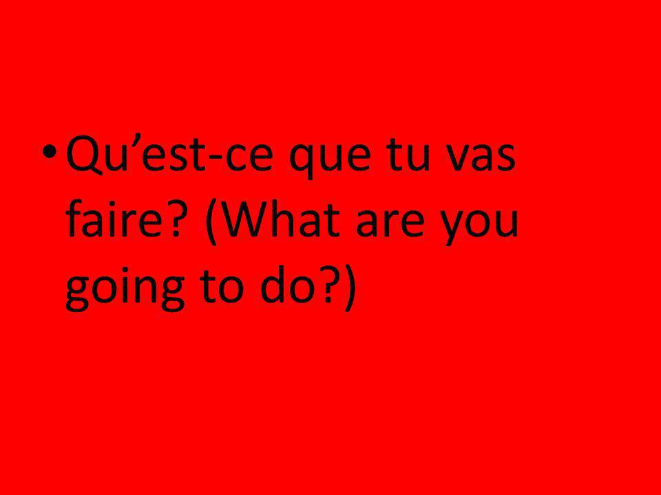 Quest-ce que tu vas faire? (What are you going to do?)