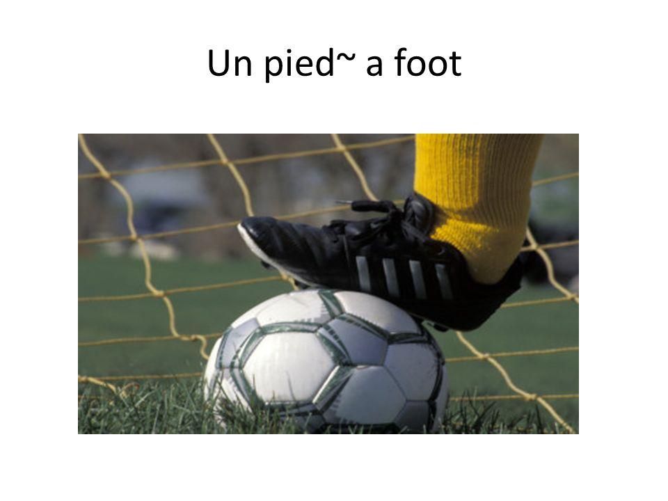 Un pied~ a foot