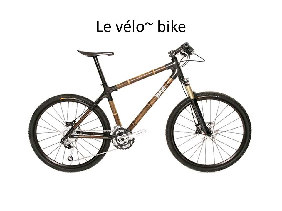 Le vélo~ bike