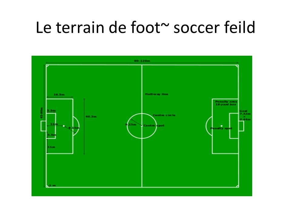Le terrain de foot~ soccer feild