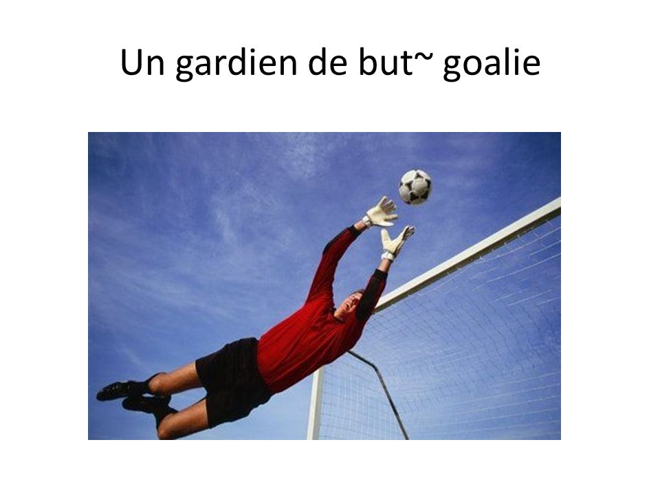 Un gardien de but~ goalie